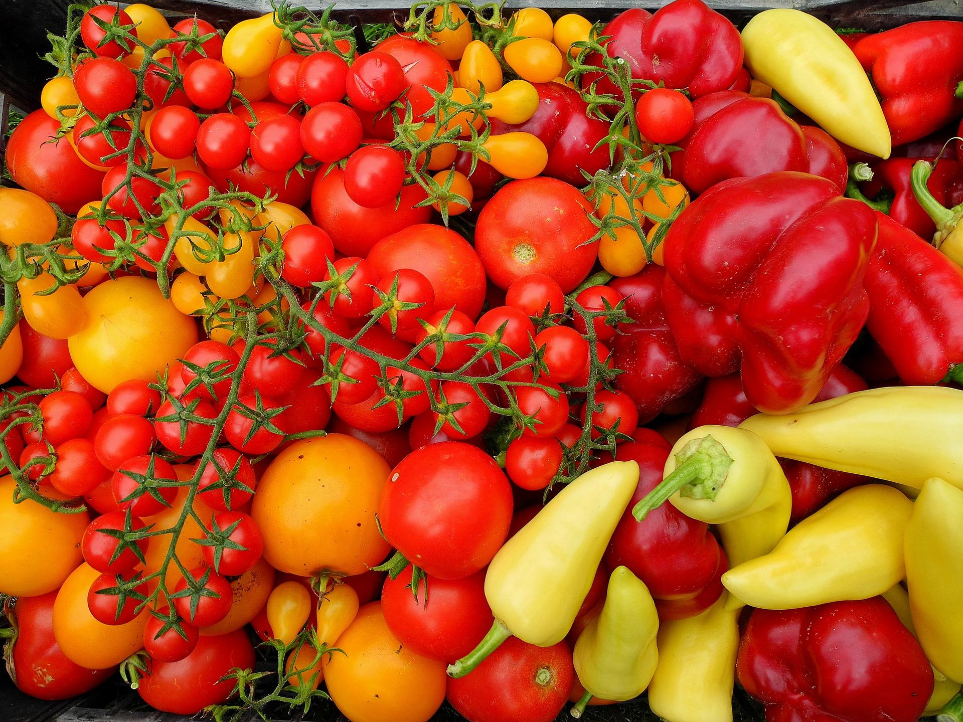 tomatoes-2768123_1920