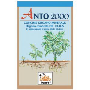 ANTO 2000