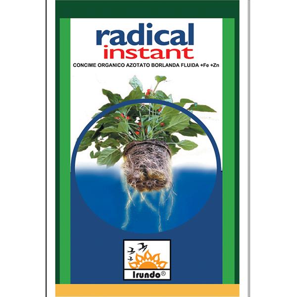 RADICAL INSTANT
