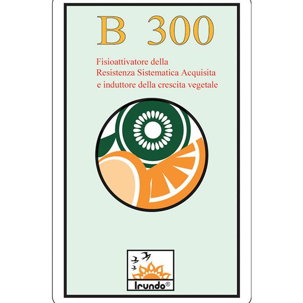 B 300