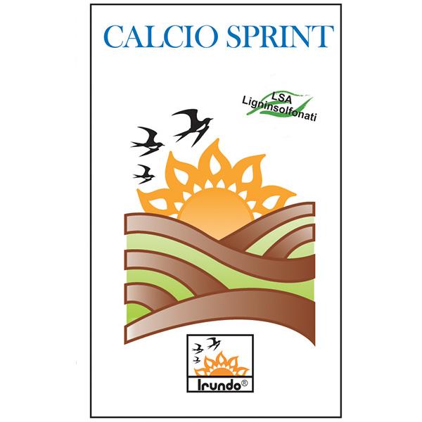 CALCIO SPRINT