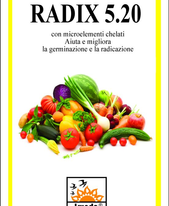 RADIX 5.20